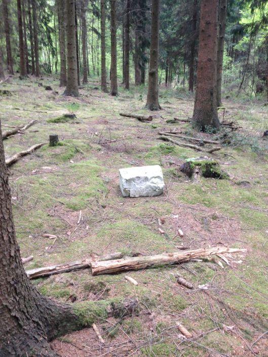 Kastenstein
