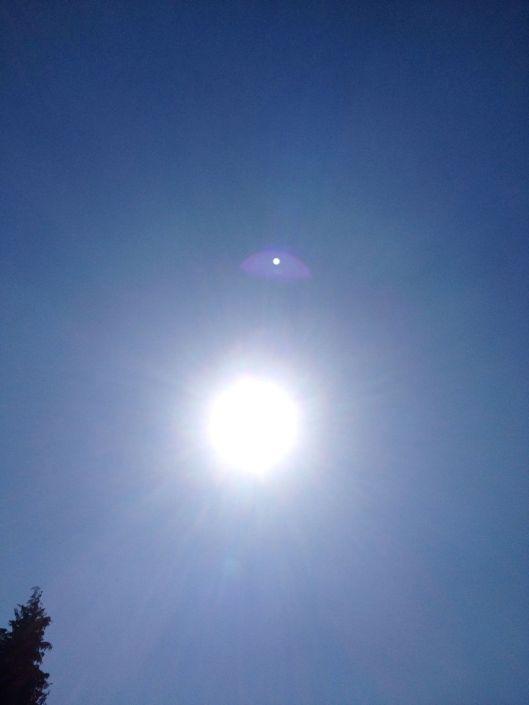 Sonnesching im Rheinland